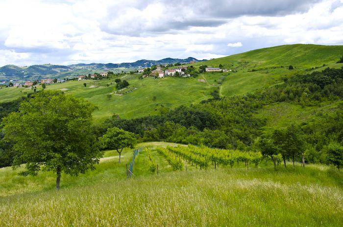 Beautiful green hills outside of Modena Emilia Romagna