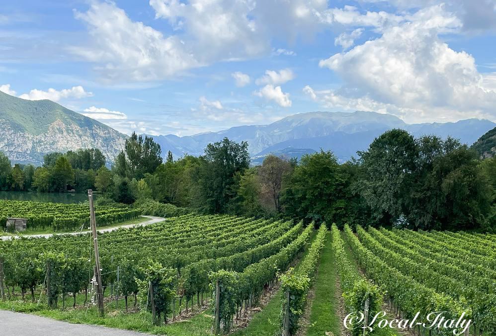 A trip to the Franciacorta wine region